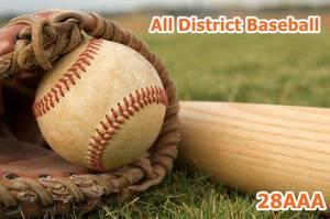 All District Baseball Honors