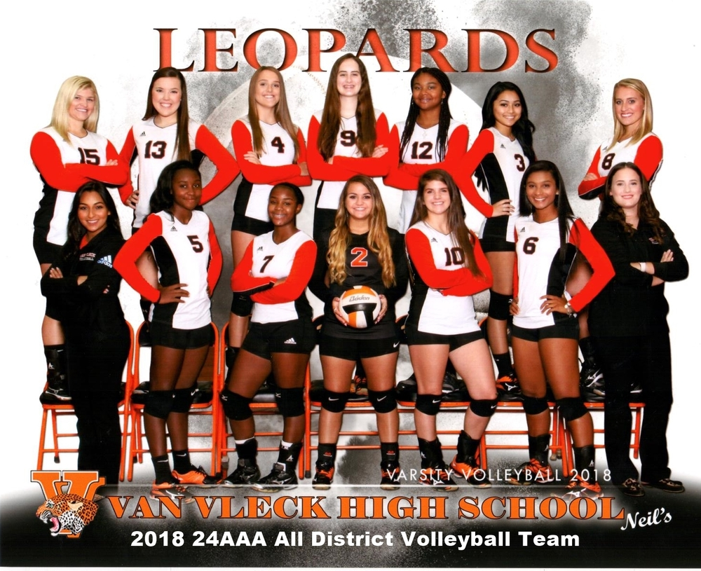 2018 All District Volleyball Team
