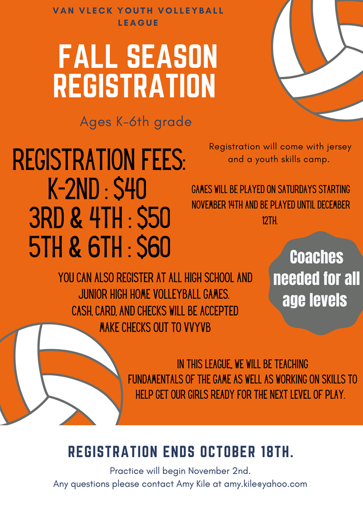 Van Vleck Youth Volleyball League